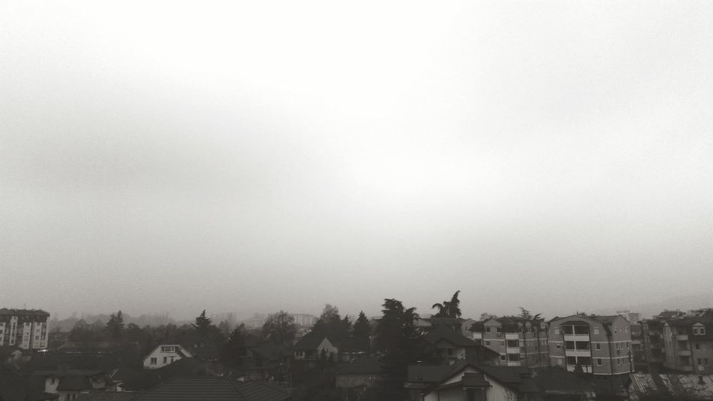 Fog City Fog Town Morning Trees Houses Photography EyeEm Best Shots Foggy Polluted Smoke Blackandwhite Simplethings Clouds Black White Gray Gray Sky
