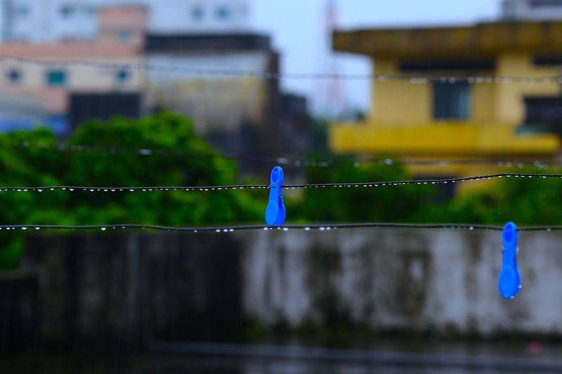 Blue Clothespin On Wet Rope In City