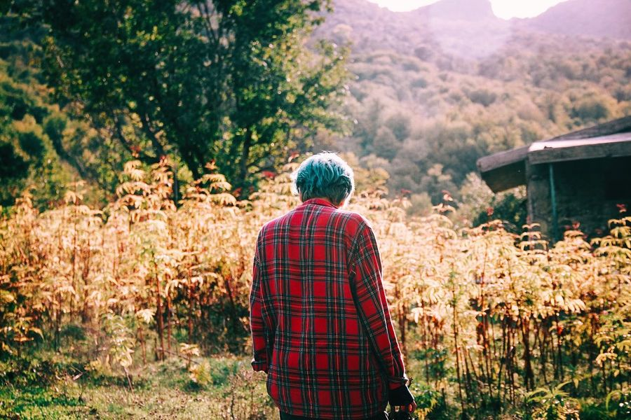 She's got ocean for a hair Rear View Nature Real People Checked Pattern Women Scenics Plant Tranquility Day Tree Mountain Outdoors Autumn