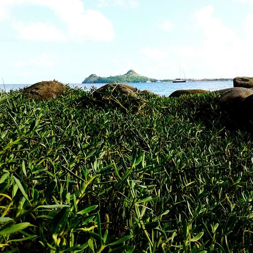 Pigeon Island in the distance on a beautiful Sunday morning Pigeonisland Sunday Morning Isnaplife
