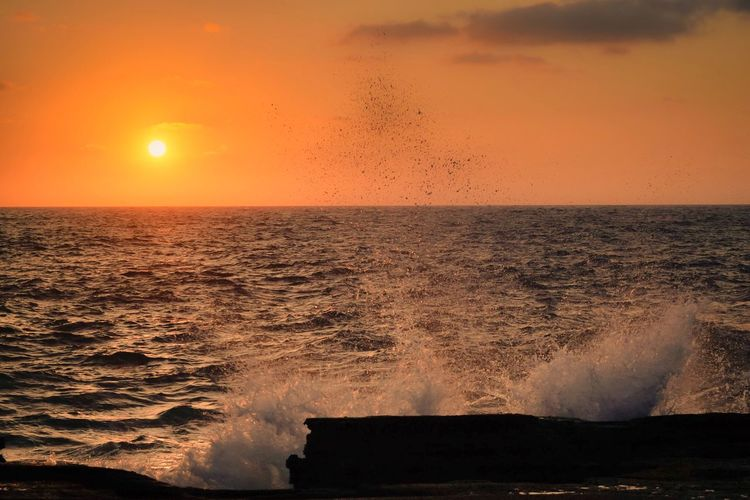 Sunset Sea Water Beauty In Nature Motion Horizon Over Water Nature Wave Orange Color Sun Scenics Sky No People Power In Nature Reflection Sunlight Breaking Beach Silhouette Outdoors Oahu, Hawaii Sunrise