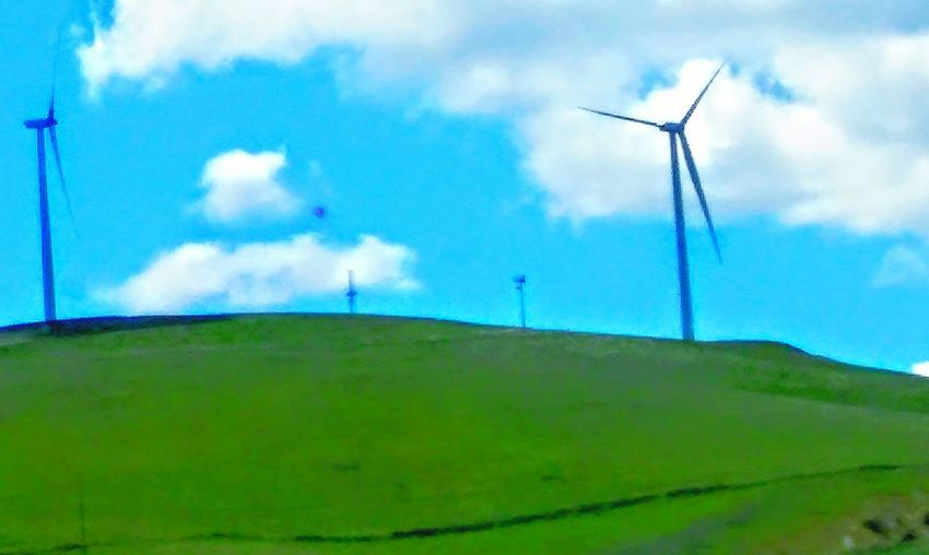 Wind Power Wind Turbines On A Field Wind Turbine My Point Of View Telling Stories Differently This Week On Eyeem Check This Out Blue Sky Showing Imperfection Green Hillside Green Freeway Scenery Drive By Photography Road Side View Highway 580 Driving Taking Photos