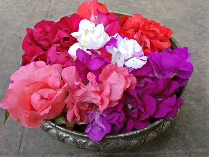 Flower Pink Color Petal High Angle View Fragility Freshness Flower Head Nature Close-up Multi Colored Multicolor Balsam Balsam Flower Basket Flowers In Bloom Flowers In Basket