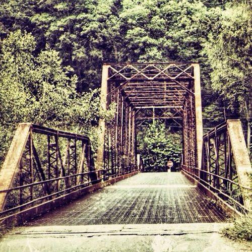 Scenic_roads Trb_country Rsa_preciousjunk Ajl_rural road_lovers jj_unitedstates ig_countryside trailblazers_rurex bridges_aroundtheworld gotowv igers_of_wv wv_igers westvirginia natureaddict outdoors rsa_country ipulledoverforthis