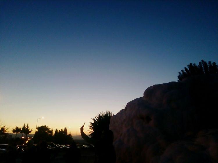 Pamukkale Pamukkale Travertenleri Pamukkale Cotton Castles Tree Silhouette Sunset Pinaceae Sky Blue Pine Tree Beauty In Nature Nature Outdoors Clear Sky
