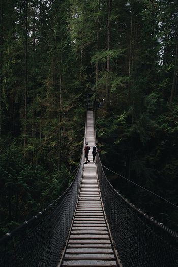 High angle view of friends standing footbridge in forest