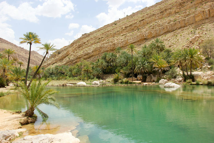 Beauty In Nature Canyon Day Lake Landscape Mountain Nature No People Oasis Oman Outdoors Palm Tree Reflection Rock - Object Scenics Sky Tranquil Scene Tranquility Tree Wadi Water