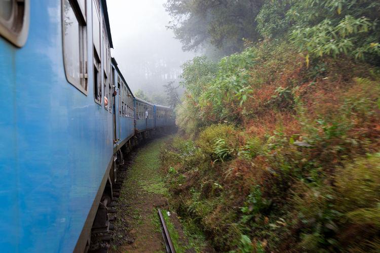 Train amidst trees against sky