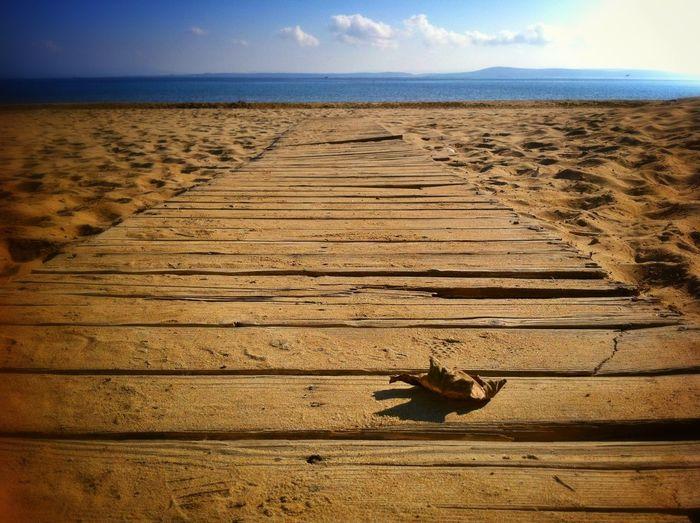 Boardwalk Leading To Sea