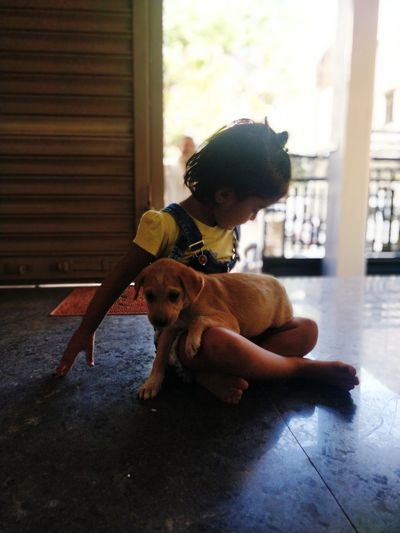Girl with dog sitting in home