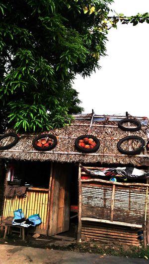 Odd house Poverty Lives. Odd House Rural House