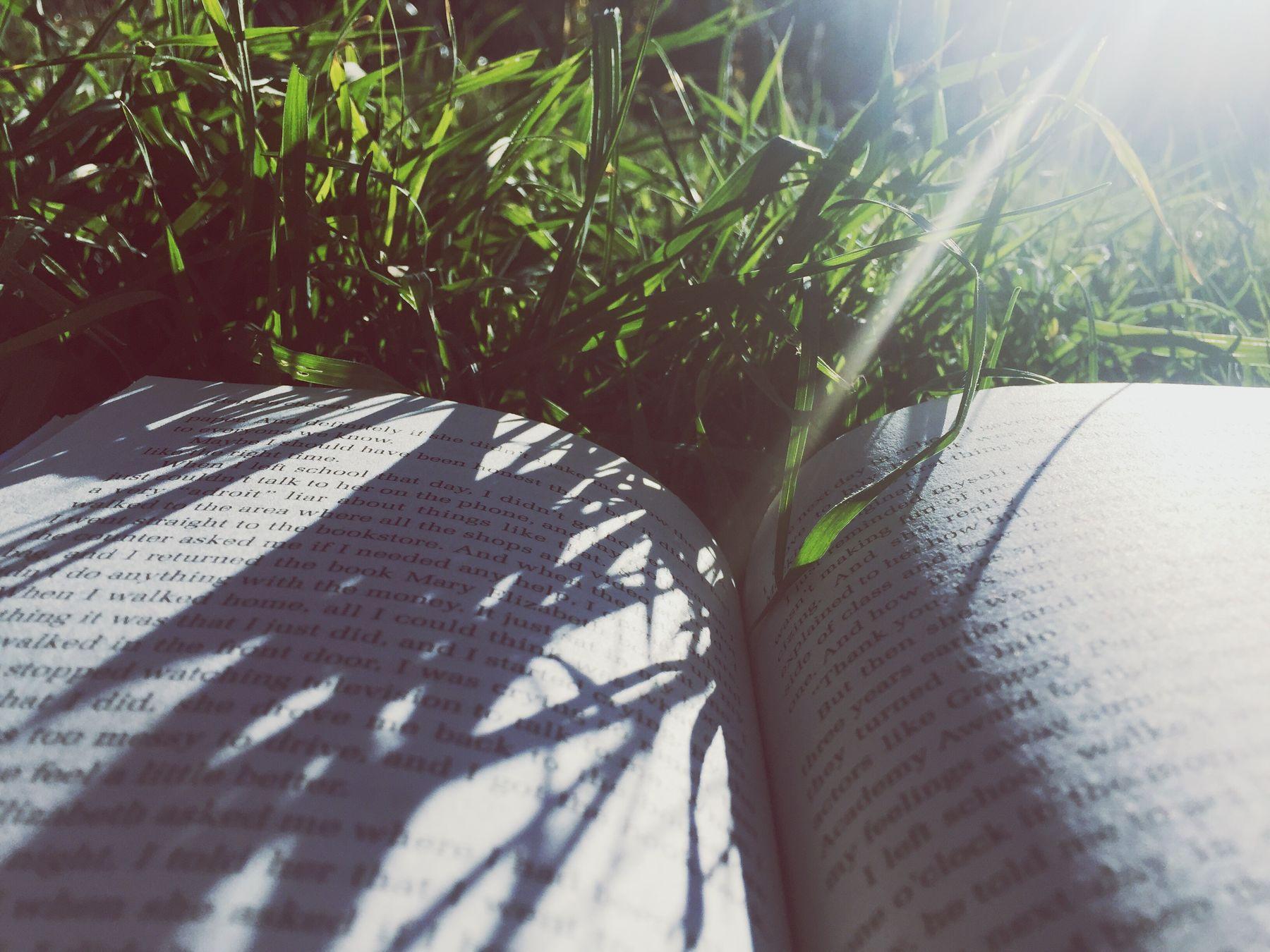 Sun Flare Sun Outdoors Book Bookworm The Perks Of Being A Wallflower Good Book Green Green Grass Shadows
