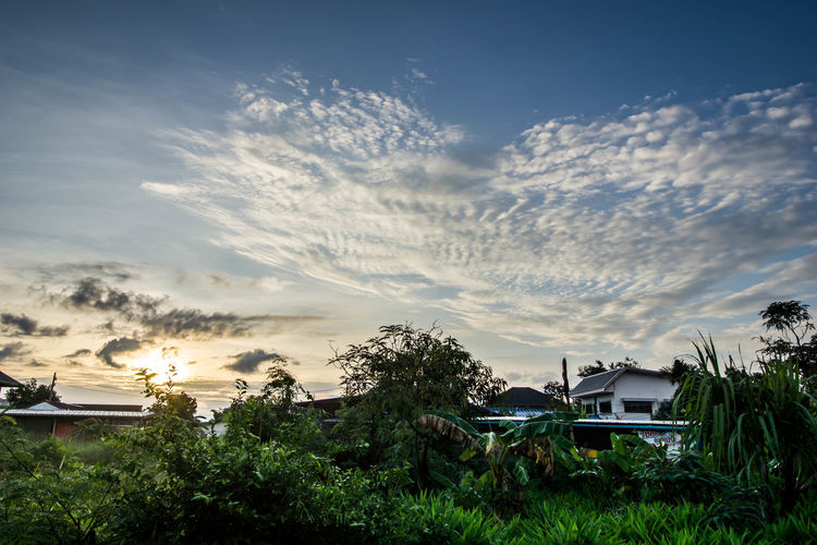 Architecture Beauty In Nature Building Exterior Built Structure Cloud - Sky Day Growth House Nature No People Outdoors Sky Tree