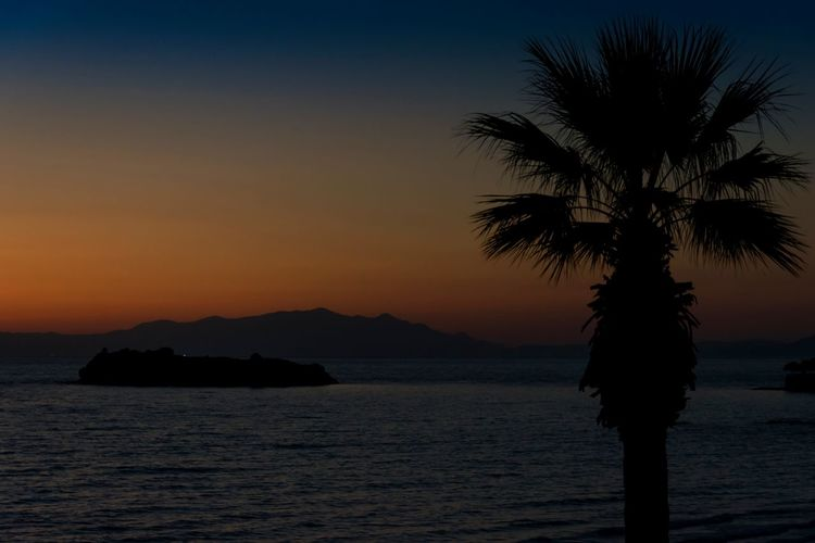 Beach Palm Tree Tree Sunset No People Outdoors Sky Night Sea Nature Water Relaxing Moments Travel Turkey Didim Clear Sky Wave Tavşan Adası Summer ☀ Been There.