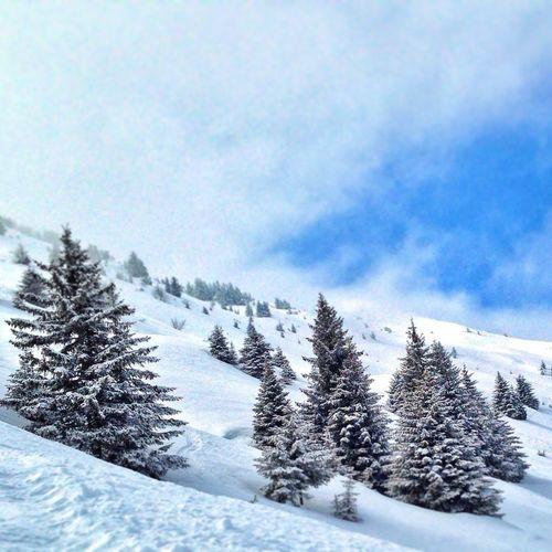 Taking Photos Snow Snowboarding Austria
