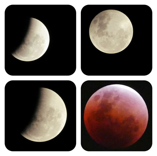 'Super blue blood moon' combine with lunar eclipse🌙🌘🌗🌖🌕🌔🌓🌒🌑 - 31 January 2018 The Minimals ( Less Edit Juxt Photography ) Hello World Check This Out Superbluebloodmoon Lunar Eclipse Night Nightphotography Outdoors Outdoor Photography Beauty In Nature Full Moon Beauty Nature Eye4photography  EyeEm Nature Lover Sky Black Color Moon No People Multiple Image Black Background Astronomy