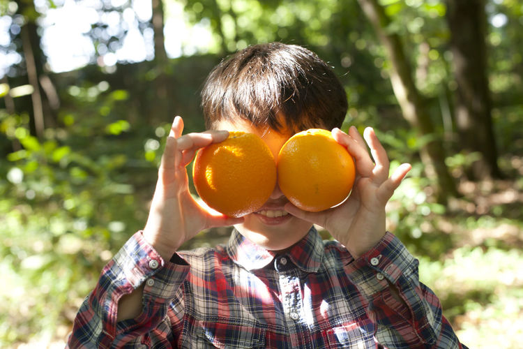 Close-up of boy holding oranges