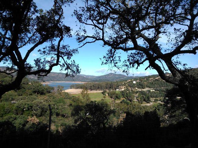 Nature Without Filters All Green Spain♥ Andalucía Nature Naturaleza ❤🌸🌹 Sin Filtros Todo Verde Senderismo Rutas Showcase: January Trekking