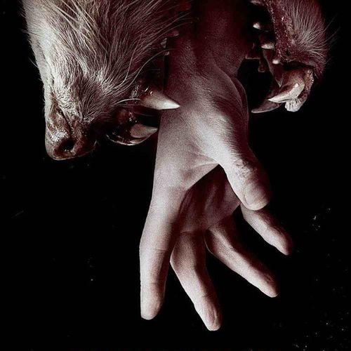 Subito esaltazione Hemlockgrove Series Horror Eliroth