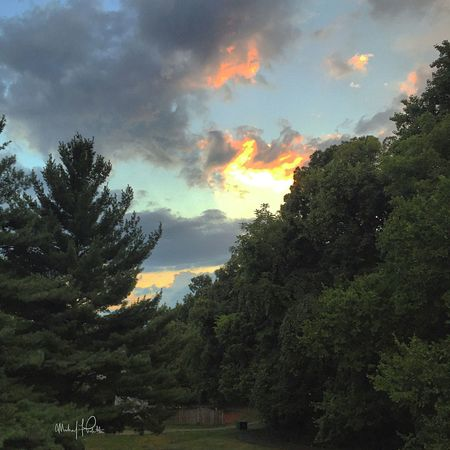 2015 | The view from my deck on my old townhouse, a selling feature actually, providing infinite photo opportunities from 2009 (when I bought it) to 2015...I should have never sold it | Photo: Michael F. Pichette Virginia Sky Taking Photos Clouds And Sky Clouds Sunset Trees Trees And Sky