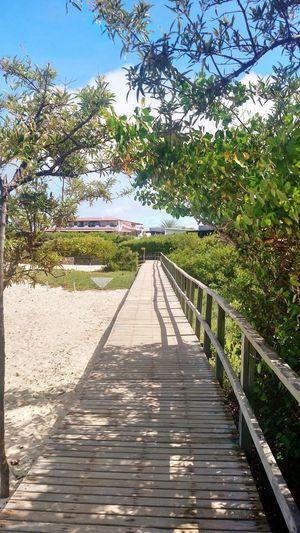 Las Grietas Beach Relax Beach Wood - Material Outdoors Pier Tree Day No People Footbridge