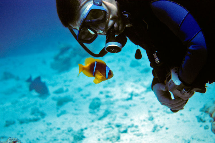 Man Scuba Diving By Fish In Sea