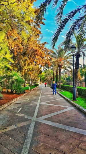 City People Outddoor Summer Mallorca Spaın S7 Edge Photography Smartphonephotography