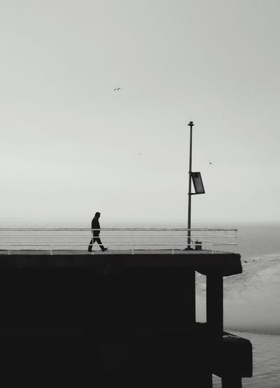 Keep walking Sea Water Flying Clear Sky Horizon Over Water One Person Sky Full Length Nature Calm Outdoors Bird Beach Day Minimalism Minimal Minimalobsession Portrait Keep Walking Pier Real People Picooftheday Photooftheday Minimalist Photography  Blackandwhite