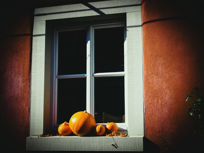Squashes On Window Sill