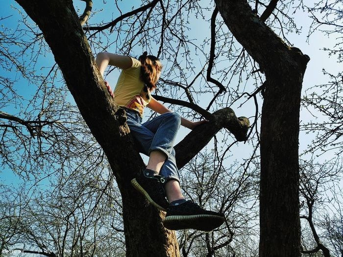 Low angle view of man sitting on tree trunk against sky