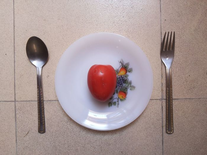 Directly above shot of fruits in plate on table