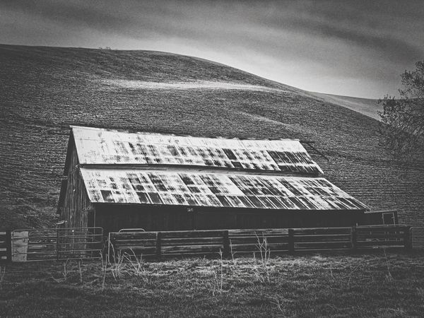 """""""Barn In Black And White"""" Barns like this are a vanishing breed but on a secluded ranch in Contra Costa County, California, this one is still fully functional. Ranching Old Barn Black And White Photography Black And White Black & White Black And White Photography Barns Barn Architecture Built Structure"""