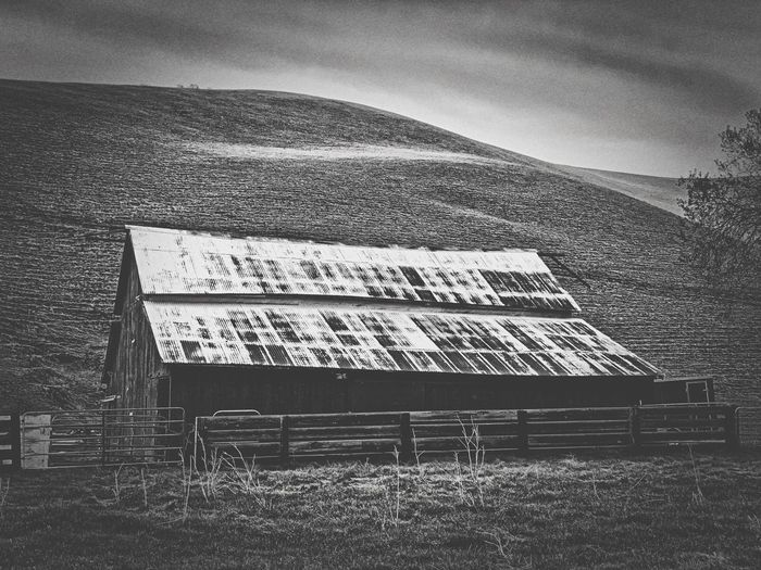 """Barn In Black And White"" Barns like this are a vanishing breed but on a secluded ranch in Contra Costa County, California, this one is still fully functional. Ranching Old Barn Black And White Photography Black And White Black & White Black And White Photography Barns Barn Architecture Built Structure"