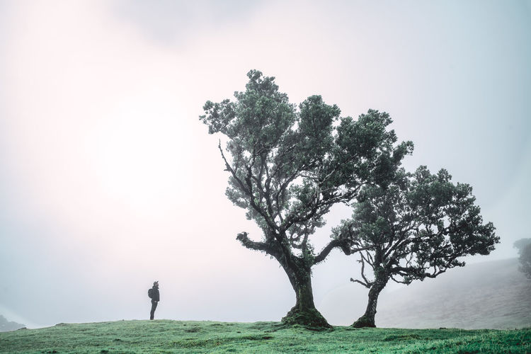 Man standing in front of a laurel tree on field against sky