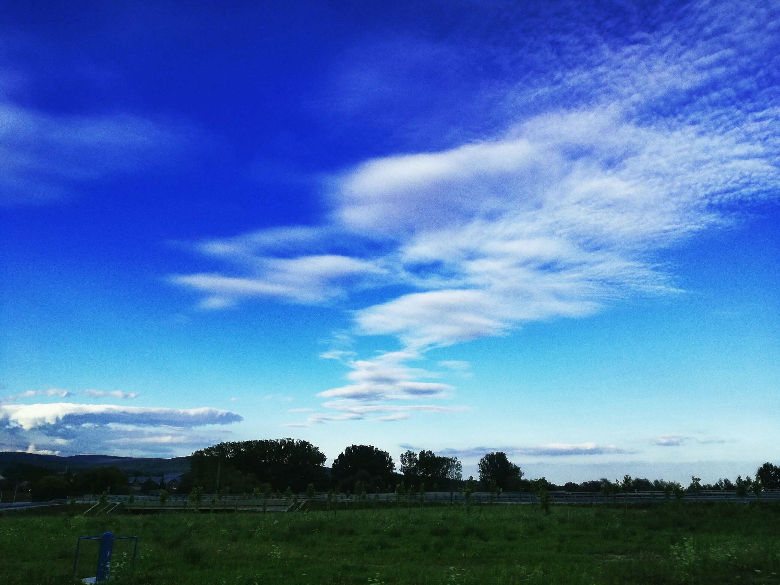 blue, landscape, tranquil scene, tree, sky, tranquility, scenics, beauty in nature, solitude, growth, nature, field, cloud, non-urban scene, remote, day, countryside, outdoors, rural scene, calm, agriculture, cloud - sky, green color, green, farm, majestic, no people, grassy