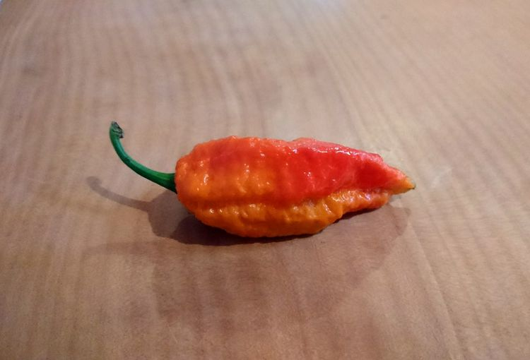 no editing needed... hot hot chilli Grown At Home Mother Nature Chilli Hot Hot Hot Orange Red Spicy Peppers Red