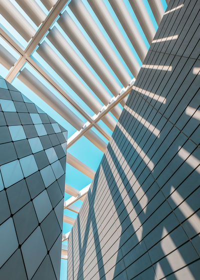 The Architect - 2018 EyeEm Awards Architecture Building Building Exterior Built Structure Ceiling City Day Full Frame Geometric Shape Glass - Material Low Angle View Modern Nature No People Office Office Building Exterior Outdoors Pattern Reflection Skyscraper Sunlight