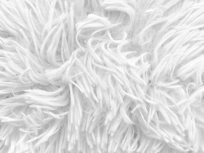 Synthetic Fur Iphonese Backgrounds Full Frame Close-up Indoors  Winter Textured