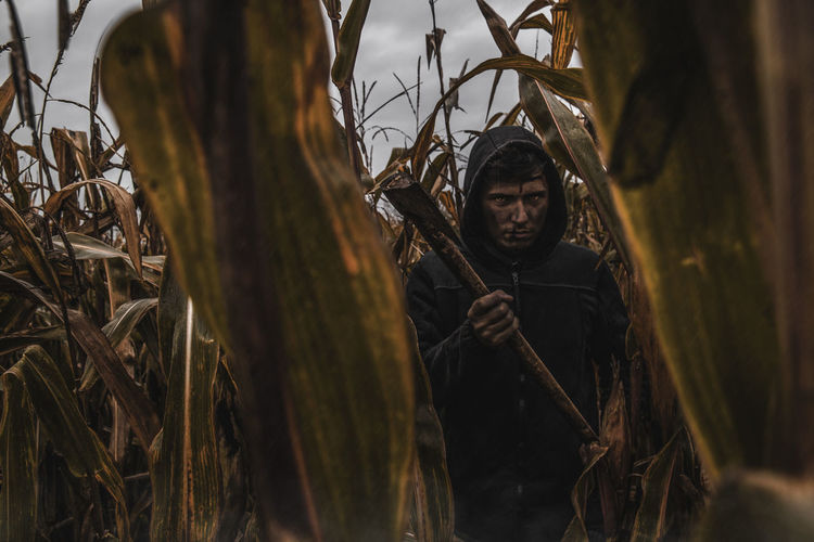 Portrait of angry man with axe standing amidst corns on farm