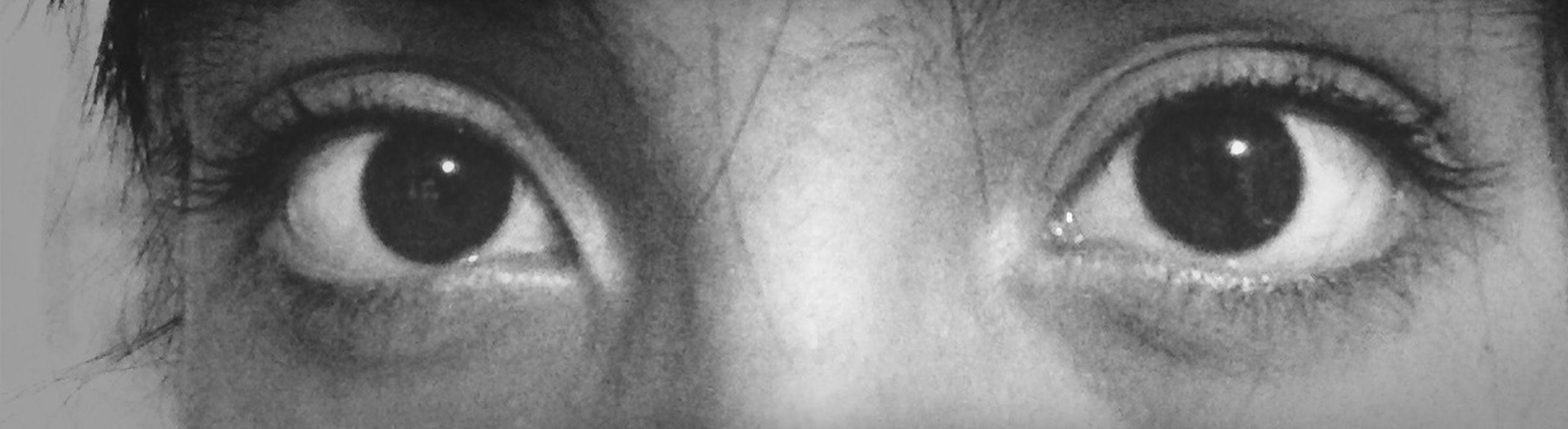 human eye, close-up, human face, looking at camera, headshot, portrait, indoors, eyelash, part of, eyesight, lifestyles, human skin, young adult, sensory perception, extreme close-up, extreme close up, eyebrow