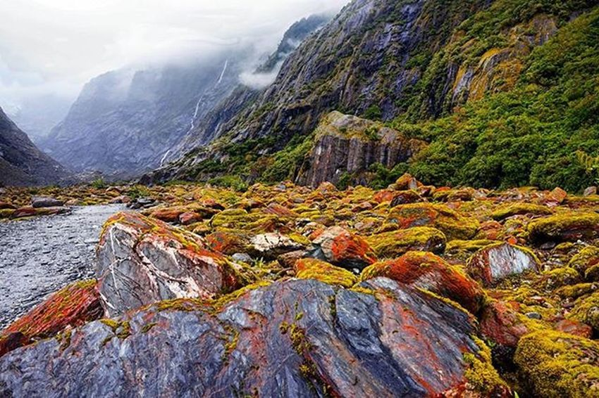 White Clouds , red stones and green surrounding // Franz Josef Glacier Valley Colours Of Franzjosef Glacier WestCoast Southisland Newzealand Valley Rocks Moss Wilderness NaturalBeauty Wanderlust Instatravel Nzmustdo Purenz NZ Neuseelandern Ig_newzealand Bestmountainartists Travel Newzealandguide Landscapes With WhiteWall The KIOMI Collection