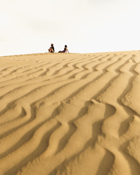 Scenics - Nature Desert Real People Sand Dune Sand Climate Land Nature Arid Climate Ice Sand Dunes Peru Peruvian Ica Laguna Moron Moron Oasis Oasis In The Desert Togetherness Group Of People Outdoors