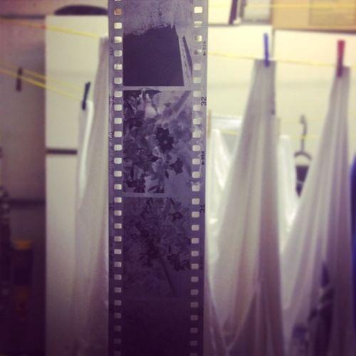 diy film developement in the Waschküche Dyi Film