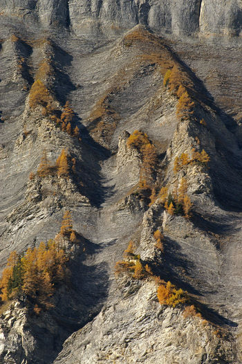Gemmiwand bei Leukerbad Autumn Autumn Colors Fels Gemmi Gemmiwand Herbst Herbstfarben Leukerbad No People Outdoors Rocks Schweiz Schweizer Alpen Swiss Alps Switzerland Switzerlandpictures Wallis