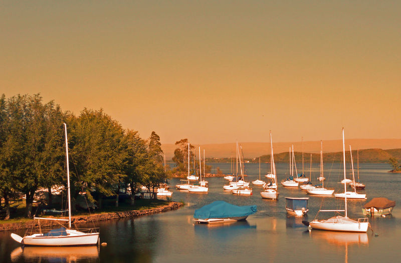embarcadero de veleros Cordobaargentina Lake Carlospaz Golden Golden Hour EyeEm Selects Nautical Vessel No People Tree Water Harbor Tranquility Scenics Transportation Sunset Travel Destinations Outdoors Sailboat Sky Moored Yacht Sailing Ship