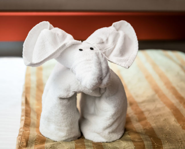 Towel folded to make an elephant on a bed. Bed Happy Adorable Art Bedroom Childhood Close-up Creative Cruise Cute Day Decoration Elephant Elephant Ears Indoors  Luxury No People Resort Room Service Stuffed Toy Towel Towel Animal EyeEmNewHere