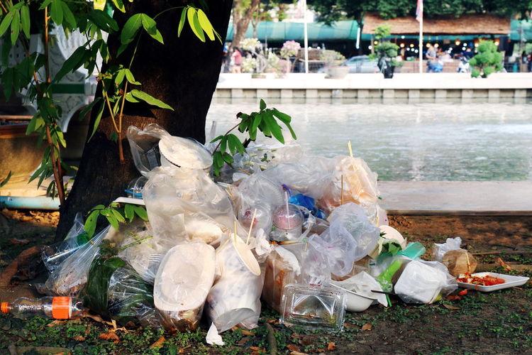 Garbage by tree