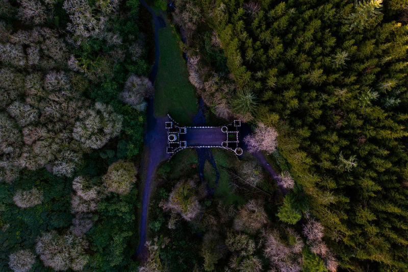 Plant Tree Nature No People Rock Outdoors Water Forest Past History Bridge Crossing Ruins Ruin Old Drone  Dronephotography High Angle View Castle Build Structure