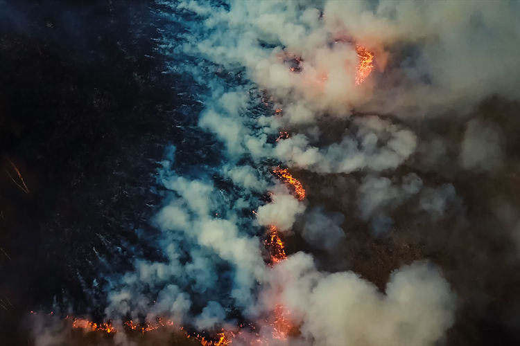 Fire on land