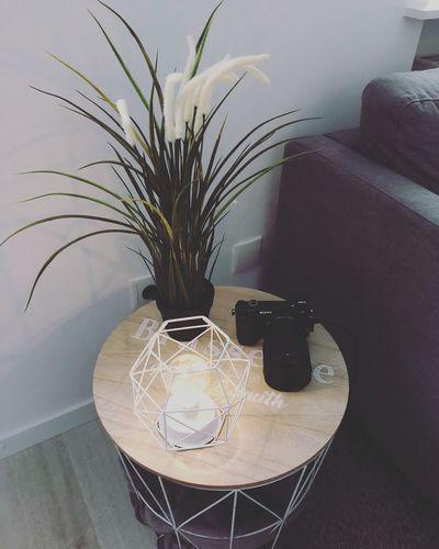 Deko Indoors  Table Home Interior Furniture Plant No People Vase Decoration Home Technology